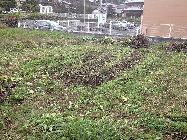2013.11.20 みのる農園フェスタ準備 002