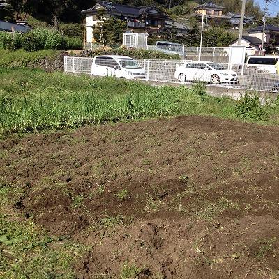 みのる農園6