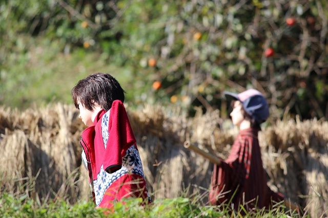 2013.10.17 案山子と稲刈り