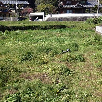 みのる農園2