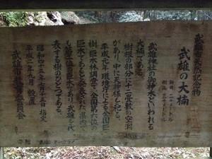 2012.12.24 武雄神社 009