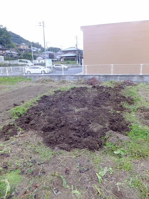 2013.11.24 みのる農園フェスタ 008