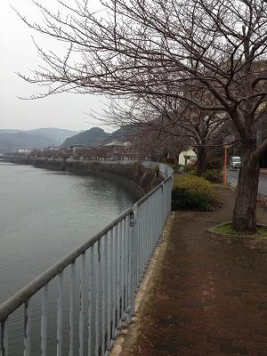 2013.1.13 東長崎イオン八郎川コース 007