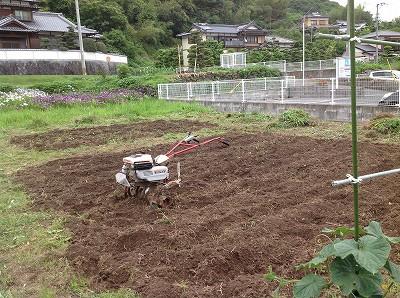 2013.06.06 みのる農園 004