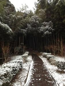2012.12.24 武雄神社 011